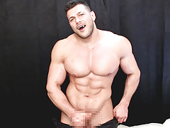 Gay vanpires
